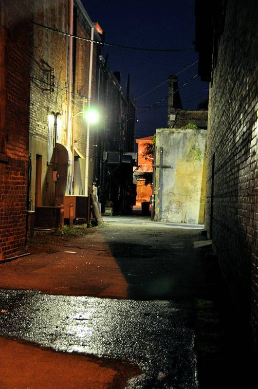 Night Scenes Art Print featuring the photograph No Alley Cats Tonight by Jan Amiss Photography