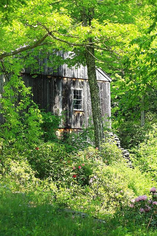 Mill Art Print featuring the photograph Old Barn by Sara Walsh