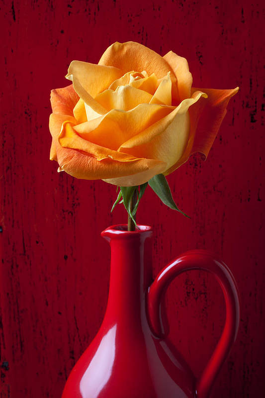 Orange Print featuring the photograph Orange Rose In Red Pitcher by Garry Gay
