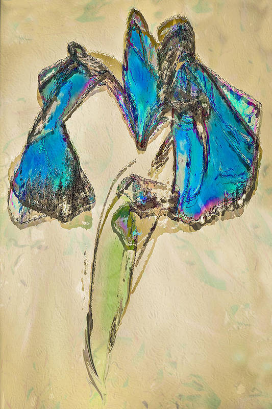 Digital Art Art Print featuring the digital art Ornate Iris by Jill Balsam