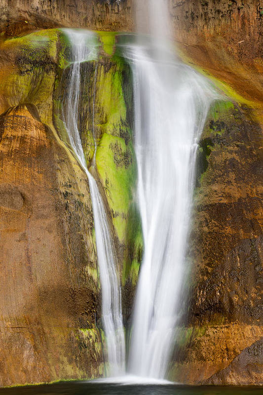 American Southwest Art Print featuring the photograph Perennial Plunge by James Marvin Phelps
