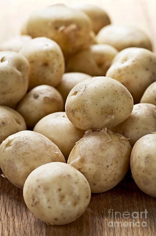 Potatoes Art Print featuring the photograph Potatoes by Elena Elisseeva