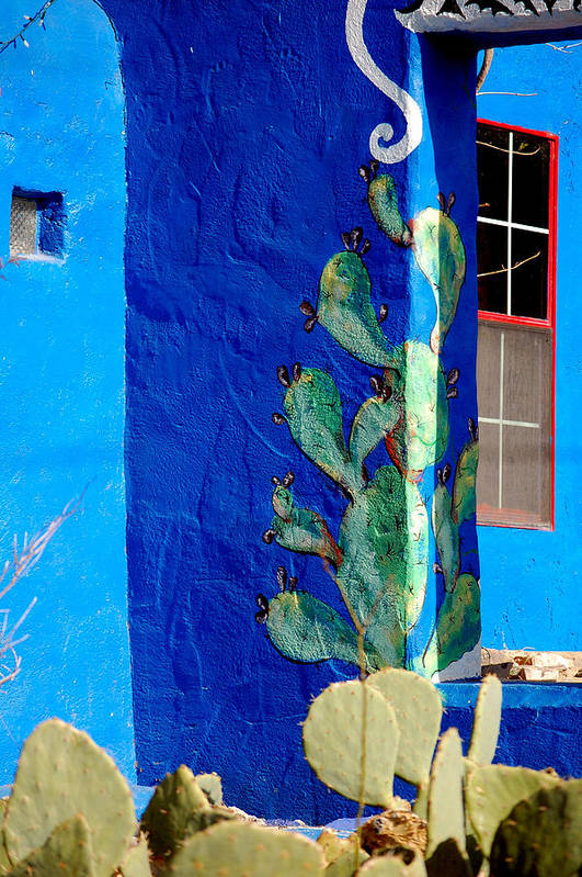 Blue Art Print featuring the photograph Prickly View 2 by David Pike
