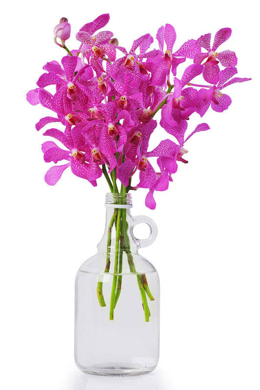 Asian Art Print featuring the photograph Purple Orchid In Bottle by Atiketta Sangasaeng