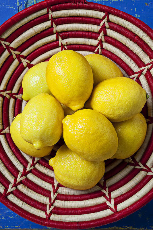 Basket Art Print featuring the photograph Red And White Basket Full Of Lemons by Garry Gay