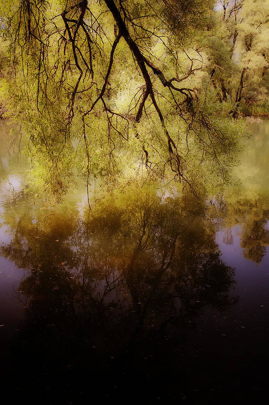 Summer Print featuring the photograph Reflection by Joana Kruse