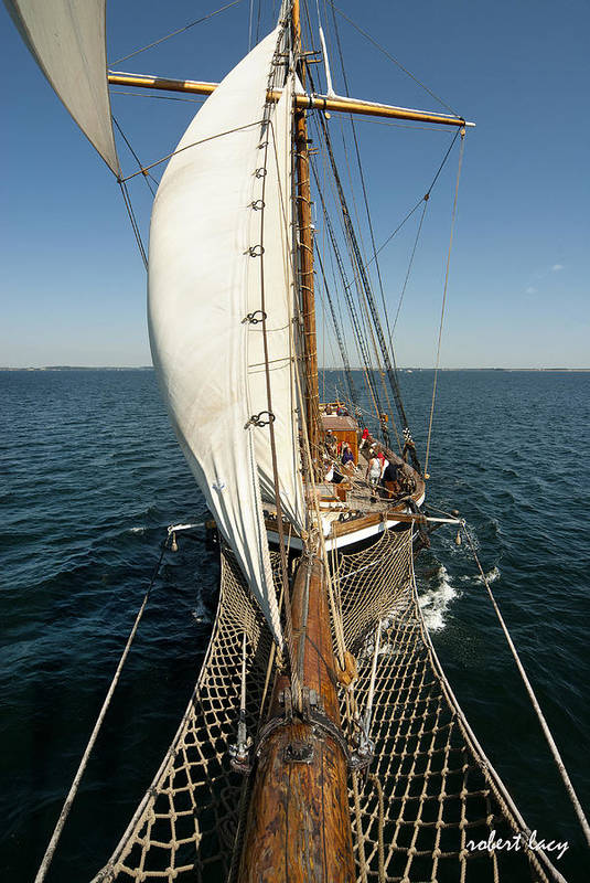 Tall Ships Art Print featuring the photograph Riding The Breeze by Robert Lacy