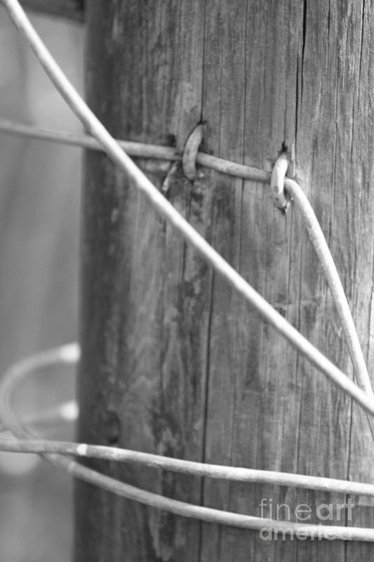 Wire Art Print featuring the photograph Rustic Wire by Susan Dinkins