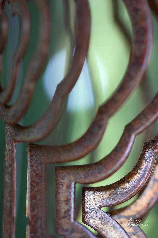 Rust Art Print featuring the photograph Rusty Windchimes by Diana Haronis