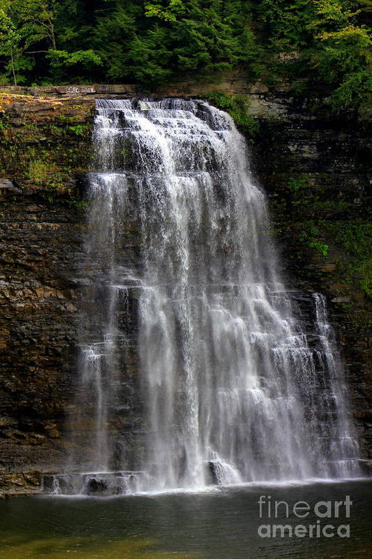Salmon River Falls Art Print featuring the photograph Salmon River Falls by Sherry Dulaney