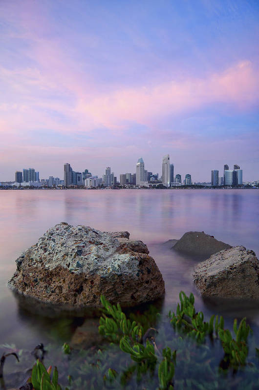 Vertical Art Print featuring the photograph San Diego Skyline by Lee Sie Photography