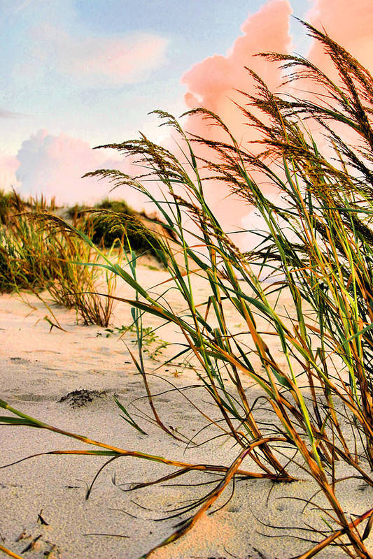 Sea Oats Art Print featuring the photograph Sea Oats And Dunes by Kristin Elmquist