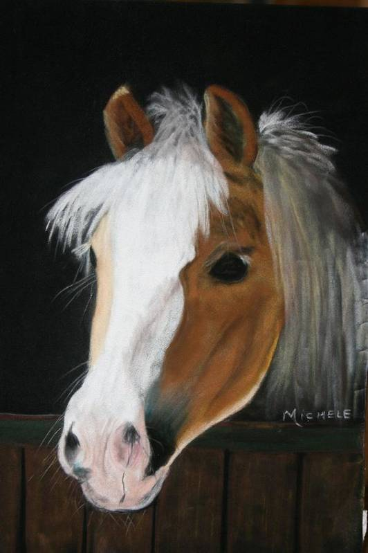 Pony Art Print featuring the pastel Shetland Pony by Michele Turney