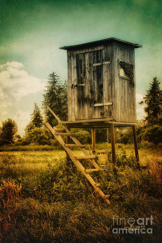Photo Art Print featuring the photograph Small Cabin With Legs by Jutta Maria Pusl