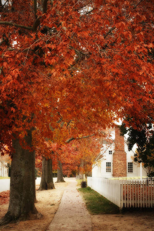 Photo Art Print featuring the photograph Small Town Autumn -1 by Alan Hausenflock