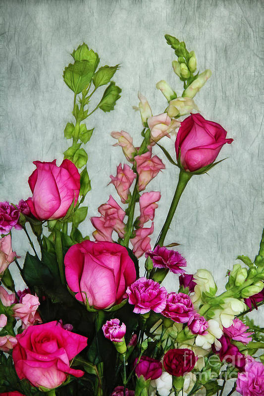 Roses Art Print featuring the photograph Spray Of Flowers by Judi Bagwell