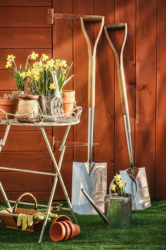 Garden Art Print featuring the photograph Spring Gardening by Amanda Elwell