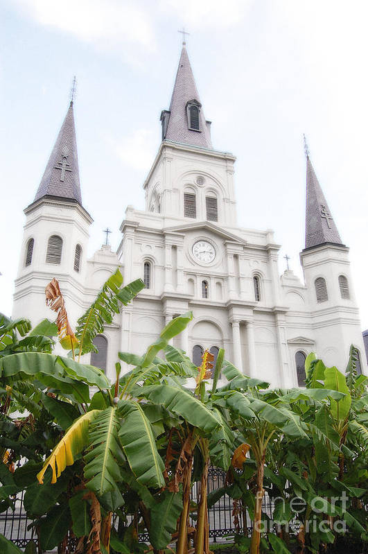 Travelpixpro New Orleans Art Print featuring the photograph St Louis Cathedral Rising Above Palms Jackson Square New Orleans Diffuse Glow Digital Art by Shawn O'Brien