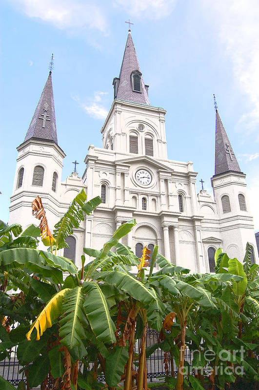 Travelpixpro New Orleans Art Print featuring the photograph St Louis Cathedral Rising Above Palms Jackson Square New Orleans Film Grain Digital Art by Shawn O'Brien
