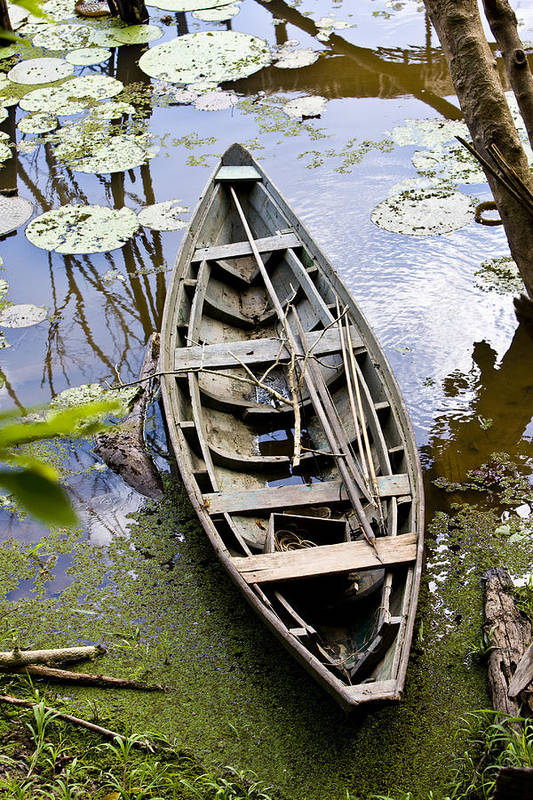 Amazon River Art Print featuring the photograph Stagnant Boat by Robert Selin
