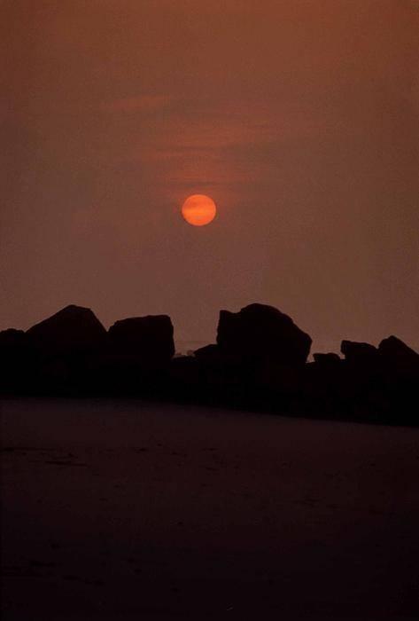 Lido Beach Art Print featuring the photograph Sunset At Lido by Ed Bertorello