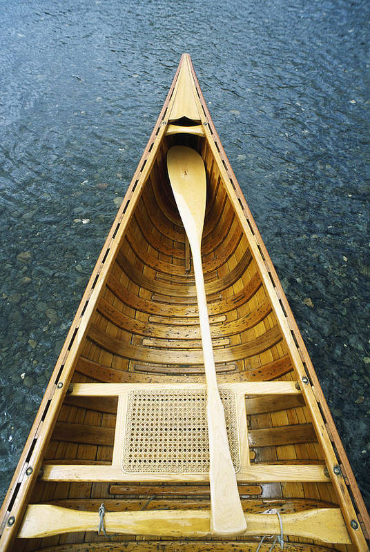 The Bow And Oar Of A Handmade Wooden Canoe Resting In Water. Art Print featuring the photograph The Bow And Oar Of A Handmade Wooden by Bill Curtsinger