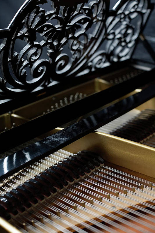Vertical Art Print featuring the photograph The Inside Of A Piano by Studio Blond