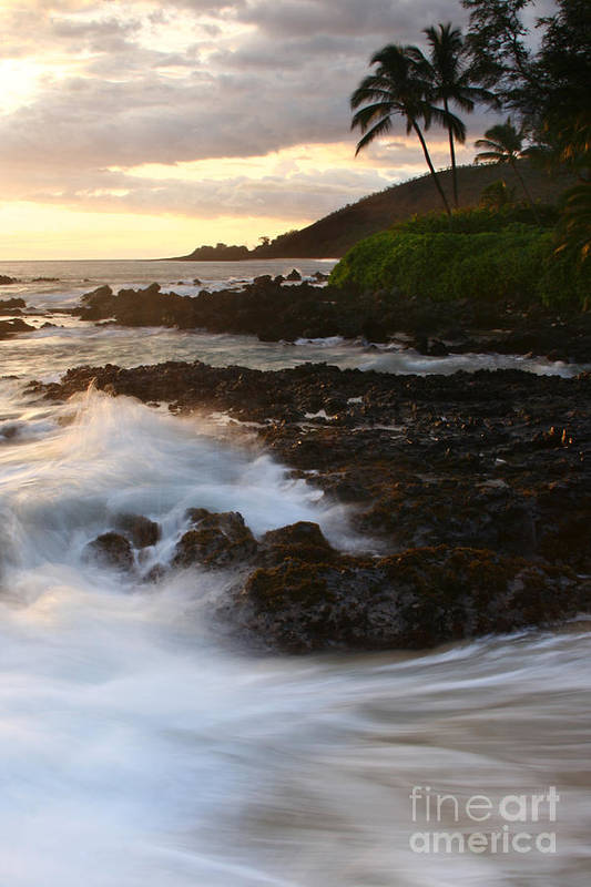 Aloha Art Print featuring the photograph The Poets Love Song by Sharon Mau