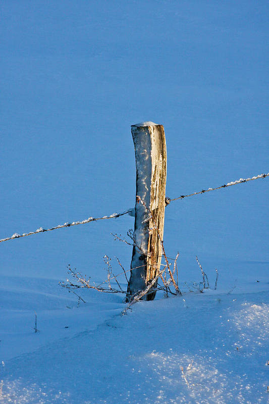 Fence Post Art Print featuring the photograph The Post by Darlene Chissom