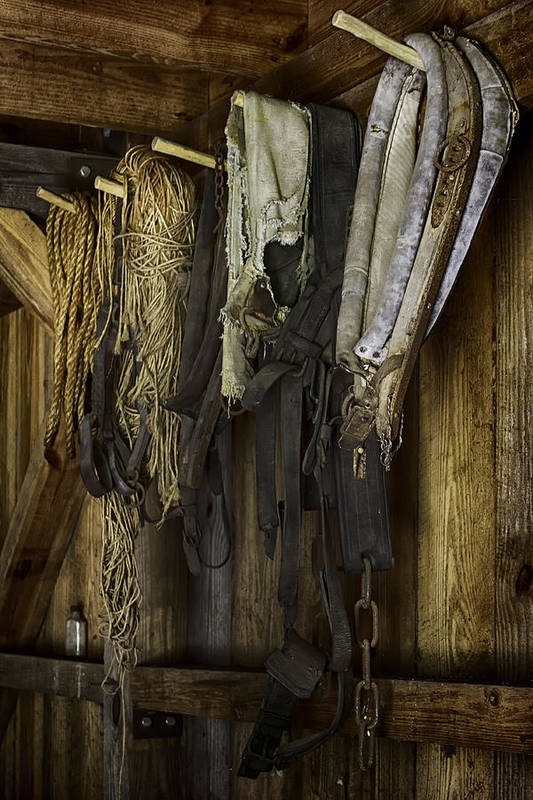 Tack Room Art Print featuring the photograph The Tack Room Wall by Lynn Palmer