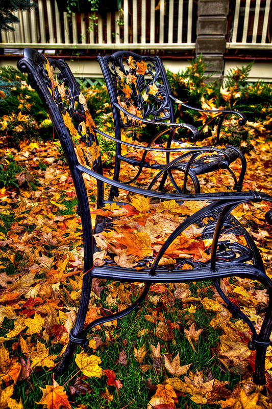 Autumn Art Print featuring the photograph Time To Rake by David Patterson