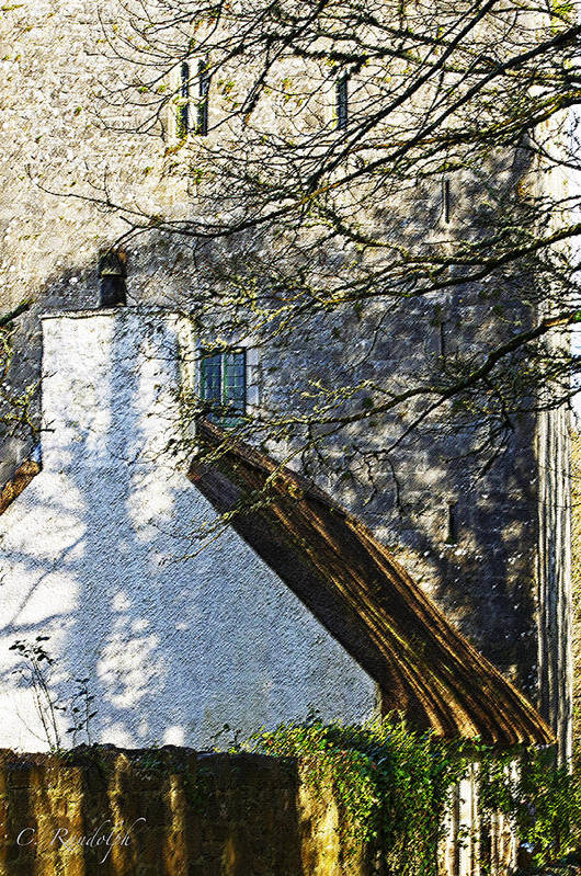 Thoor Ballylee Art Print featuring the photograph Tower And Thatch by Cheri Randolph