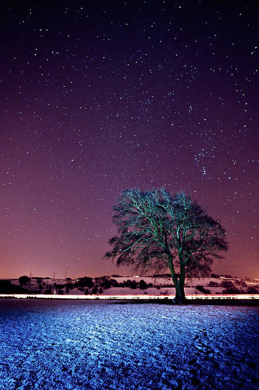 Vertical Print featuring the photograph Tree Snow And Stars by Paul McGee