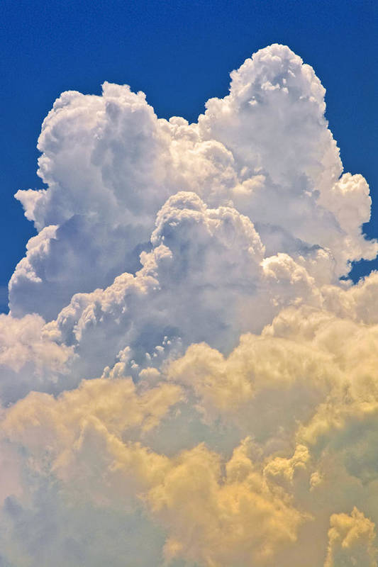 Cumulus Art Print featuring the photograph White Clouds by Patrick M Lynch