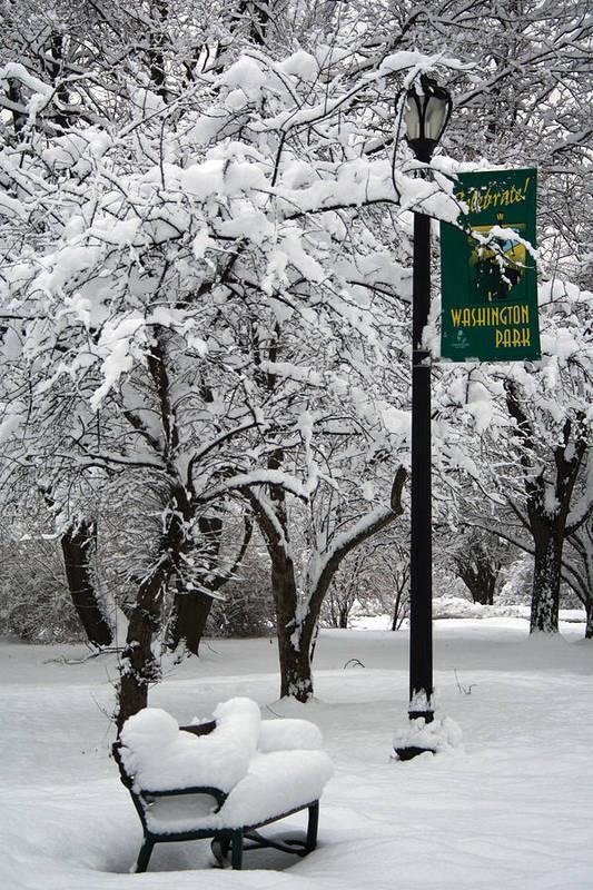 Winter Art Print featuring the photograph Winter 0003 by Carol Ann Thomas