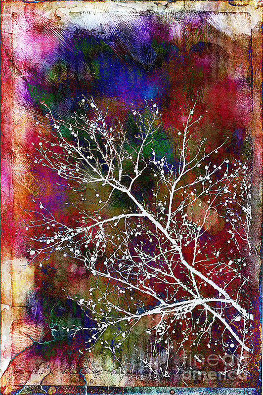 Winter Art Print featuring the photograph Winter Wishes by Judi Bagwell