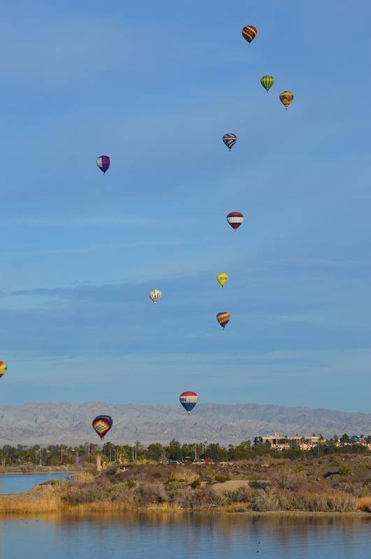 Balloons Art Print featuring the photograph Balloons by Barbara Angle