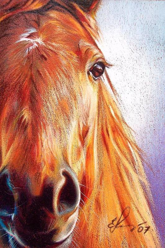 Horse Animal Art Equine Drawing Portrait Art Print featuring the drawing Chestnut by Elena Kolotusha
