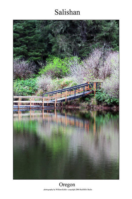 Oregon Coast Photographs Art Print featuring the photograph Salishan by William Jones
