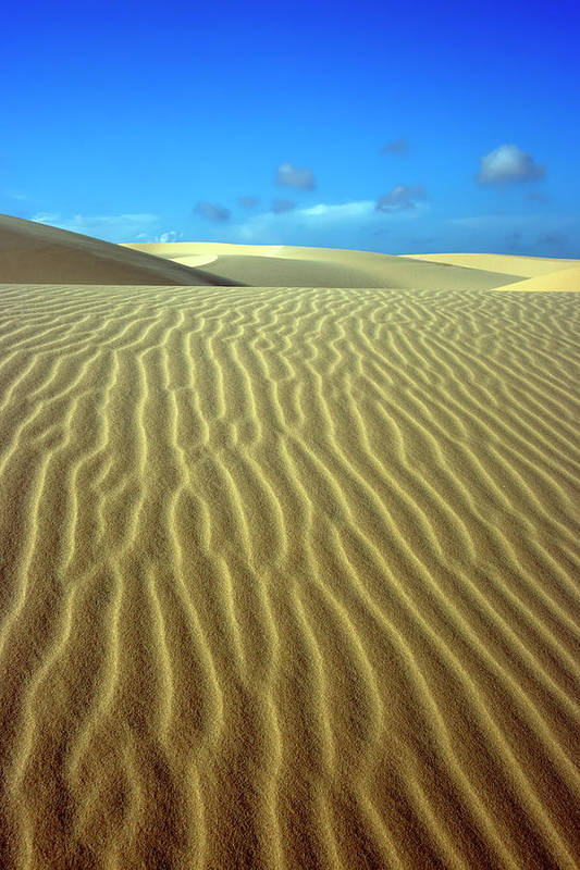 Sand Art Print featuring the photograph Sandy Desert by MotHaiBaPhoto Prints