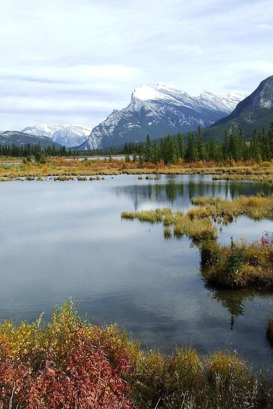 Banff National Park Art Print featuring the photograph Vermillion Lakes by Tiffany Vest