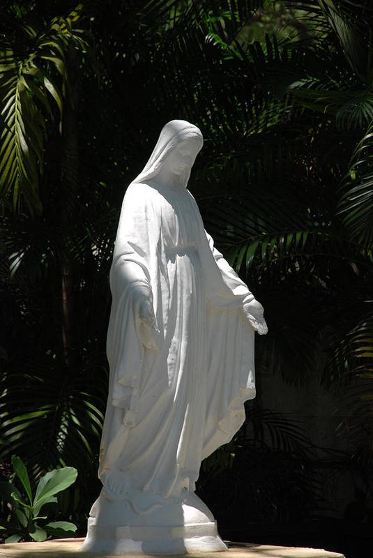 Florida Art Print featuring the photograph Virgin Mary by Rob Hans