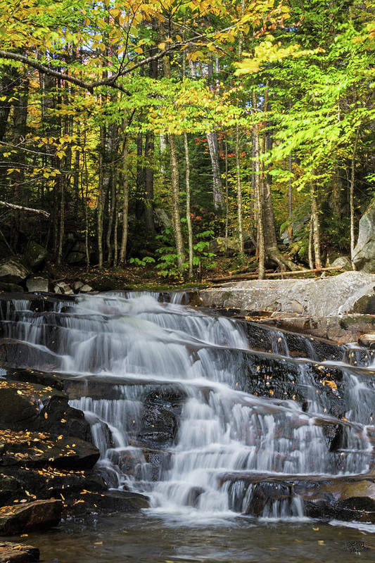 Water Art Print featuring the photograph Discovery Falls by Brett Pelletier