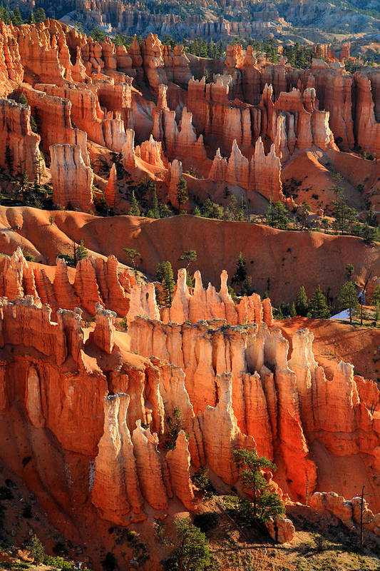 Bryce Art Print featuring the photograph Hoodoos Of Sunset Point In Bryce Canyon by Pierre Leclerc Photography