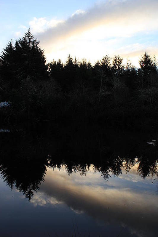 Pond Art Print featuring the photograph Reflections by Denise Lowery