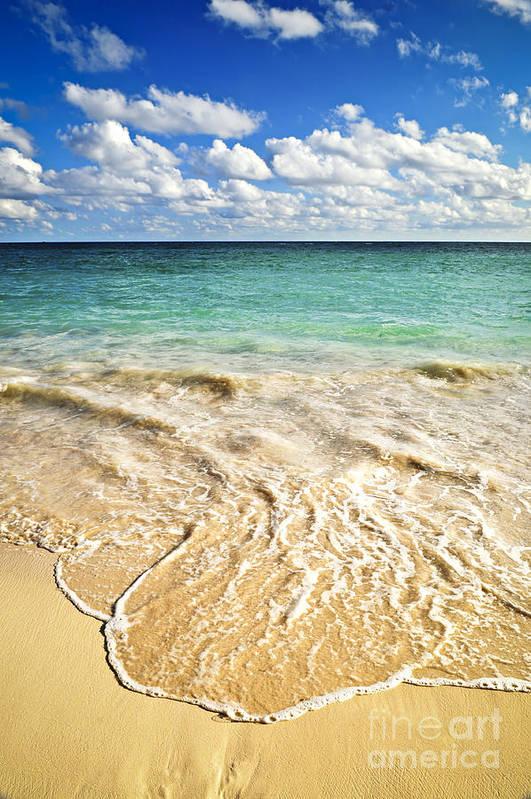 Beach Art Print featuring the photograph Tropical Beach by Elena Elisseeva