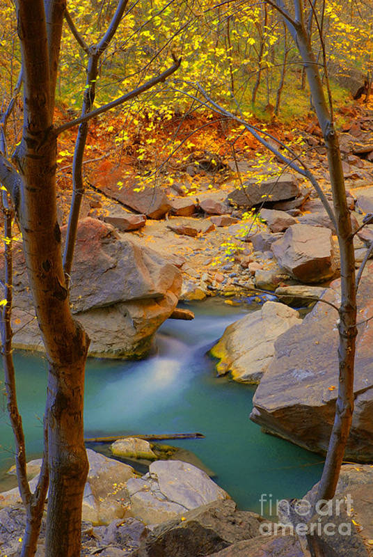 Utah Art Print featuring the photograph Virgin River In Autumn by Dennis Hammer