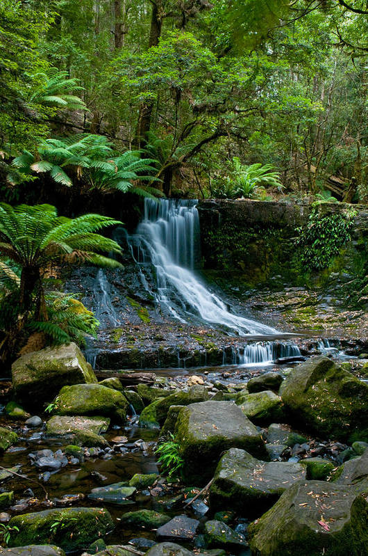 Adventure Art Print featuring the photograph Waterfall In Deep Forest by Ulrich Schade