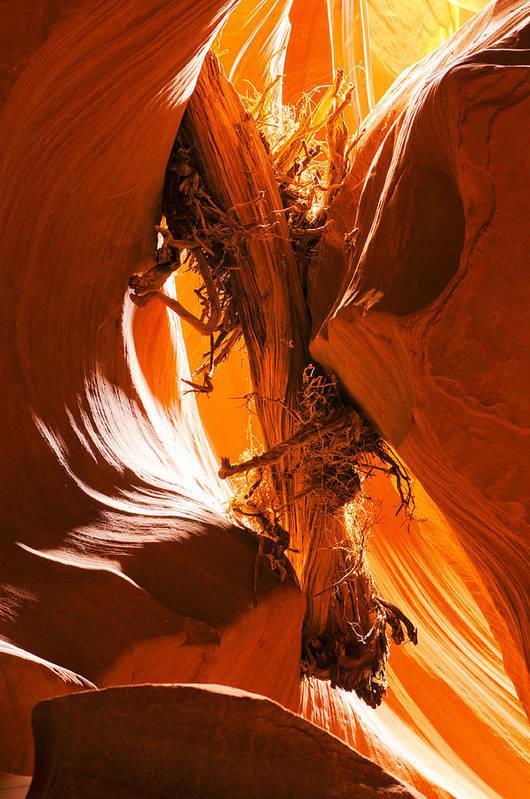 Antelope Art Print featuring the photograph Antelope Canyon by Jacek Joniec