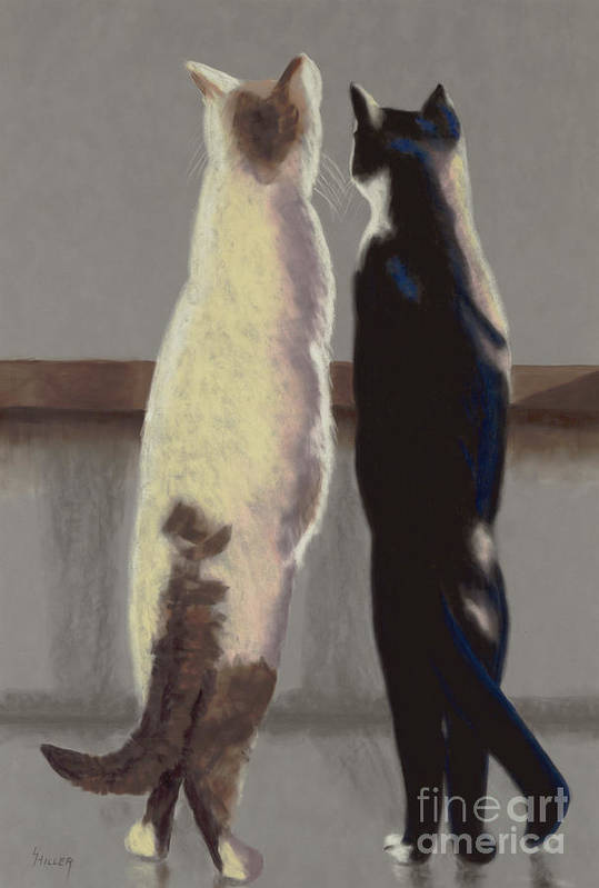 Cat Art Print featuring the painting A Bird by Linda Hiller